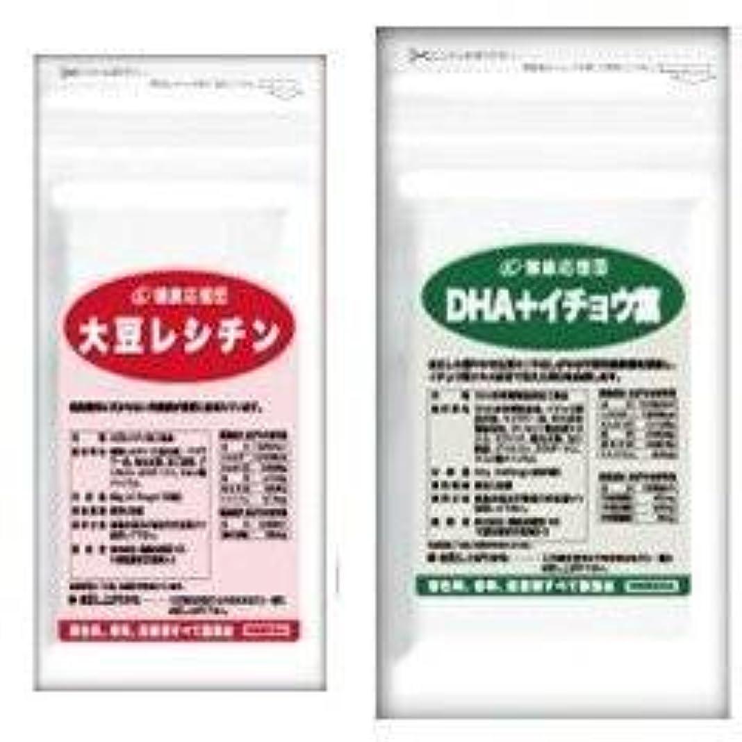 組み込むスリンクふつう(お徳用6か月分)流れサラサラセット 大豆レシチン+(DHA?EPA+イチョウ葉)6袋&6袋セット