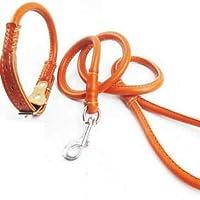 ShiMin 革の牽引ラウンドロープ子犬ロープ小さなテディBomei小型犬の牽引ロープ子犬牽引 (Color : Orange)