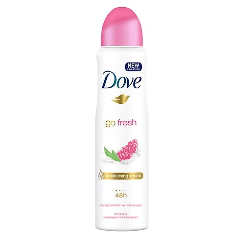 顕著寄稿者マーティンルーサーキングジュニアDove Go Fresh Spray Antiperspirant Deodorant, Pomegranate and Lemon Verbena, 150ml