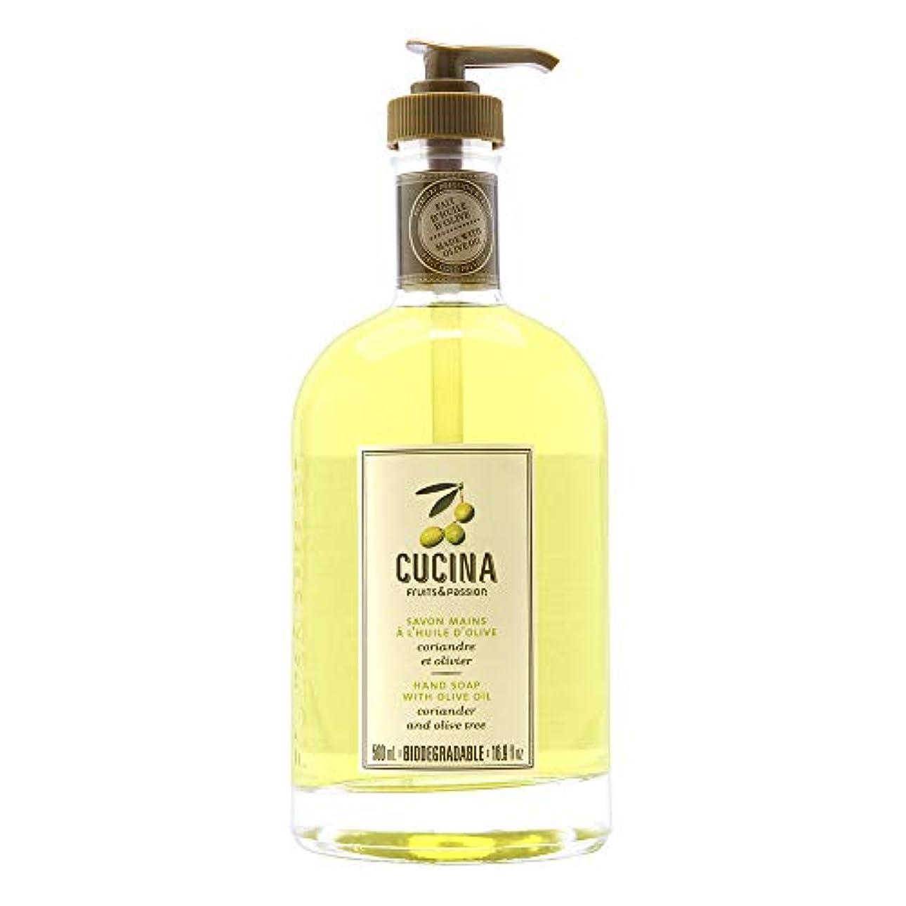 オート毎回貧困Cucina Purifying Hand Soap, Glass Dispenser Lime Zest 16.9 oz. by Cucina