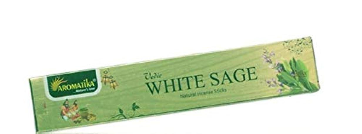 裂け目仮定、想定。推測苦しめるaromatikaホワイトセージ15 gms Masala Incense Sticks Pack of 12