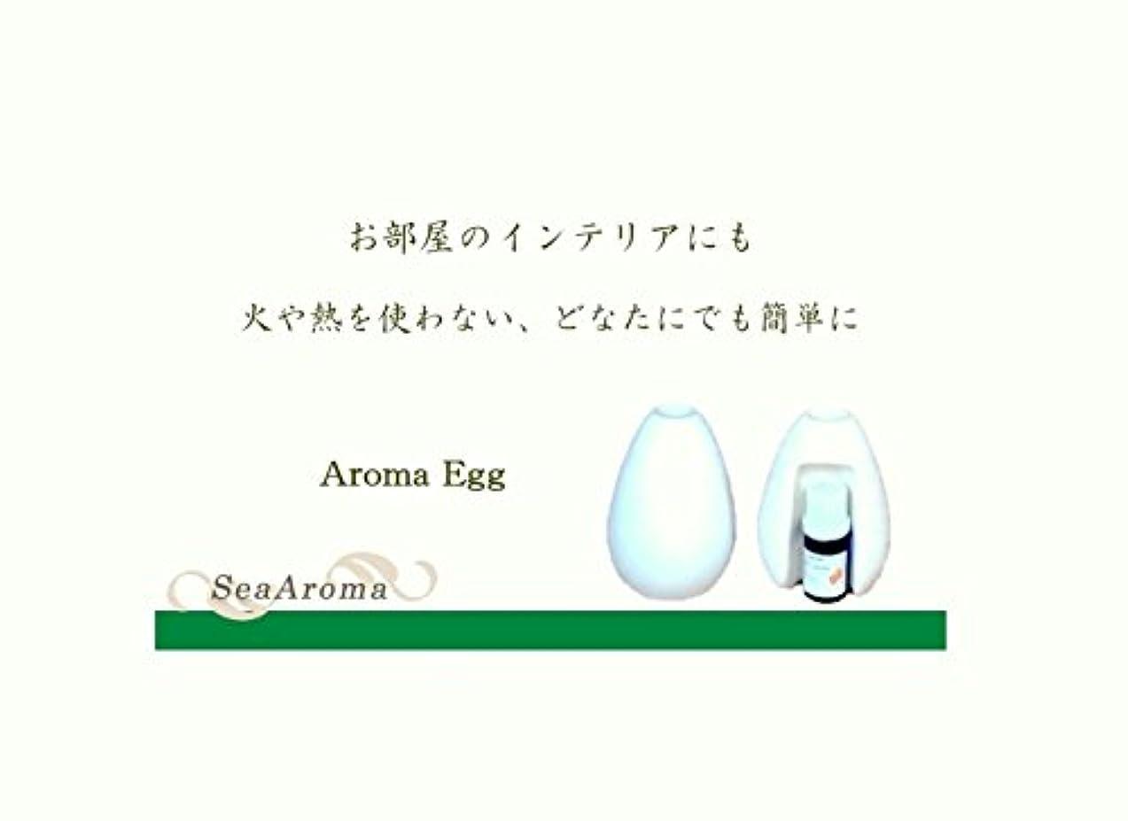 影響練る協力Aroma Egg