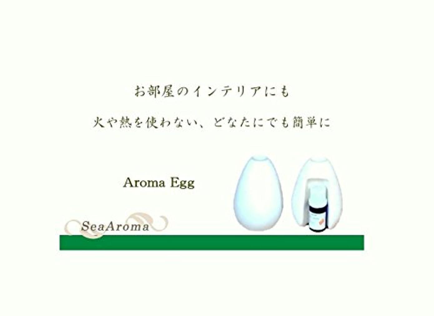 乱れ発見するレジデンスAroma Egg