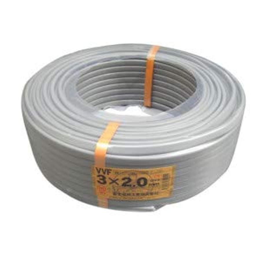 モルヒネ荒野侵入富士電線工業 低圧配電用ケーブル(VV-F) 3C×2.0mm(灰)100m