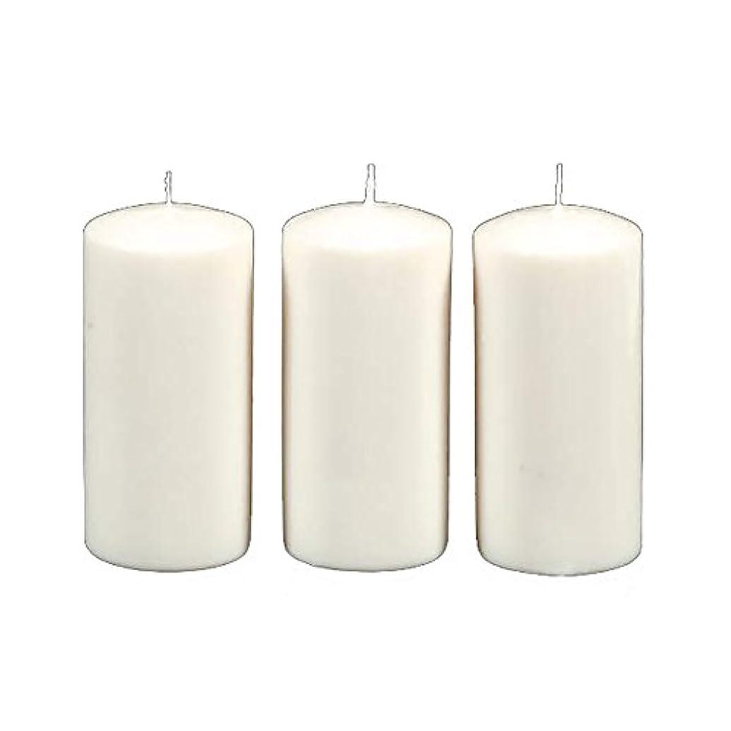 傑出した列挙する脱獄Darice 3-Piece Unscented Pillar Candles, 3 Inch by 6-Inch, White by Darice