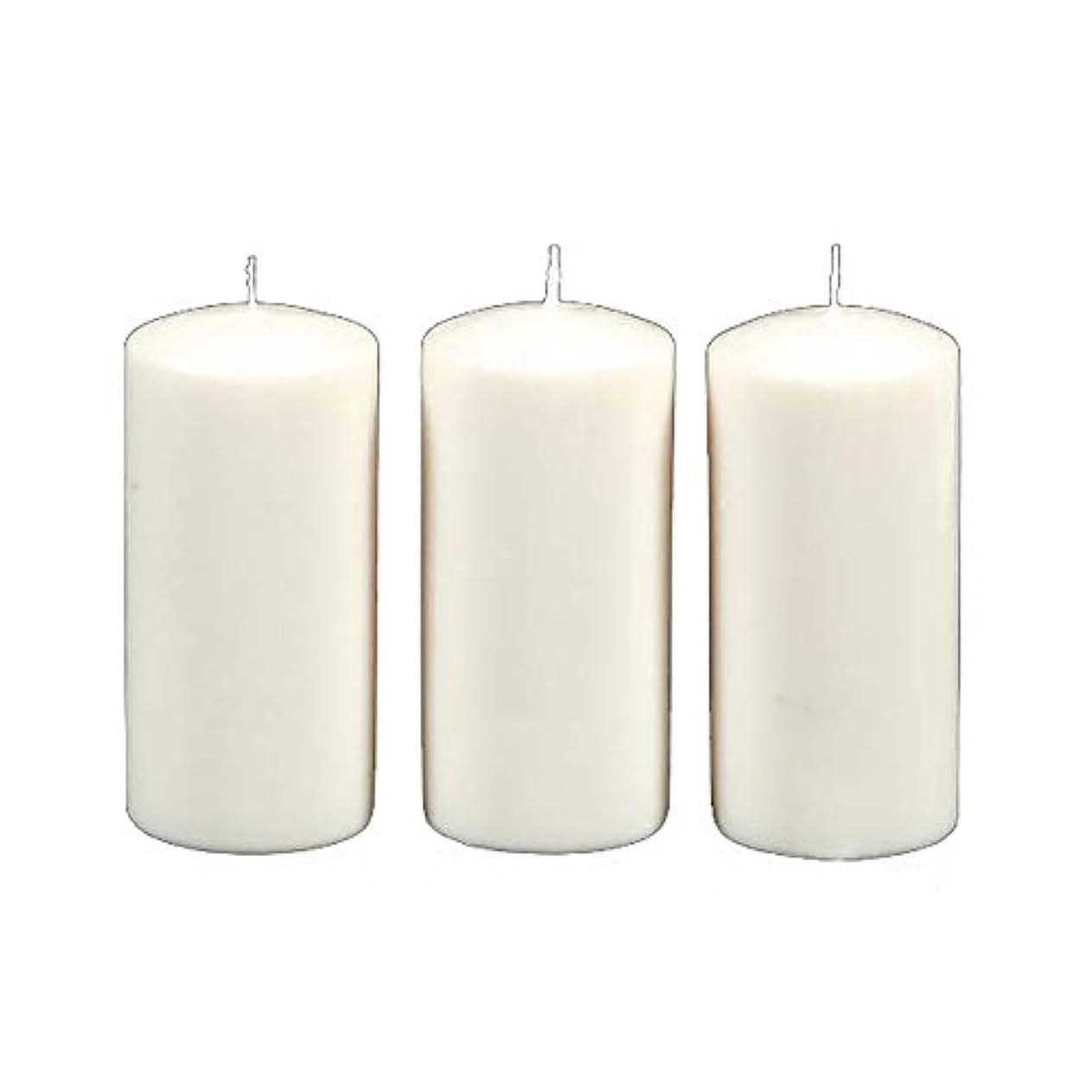 値下げ勃起発掘するDarice 3-Piece Unscented Pillar Candles, 3 Inch by 6-Inch, White by Darice