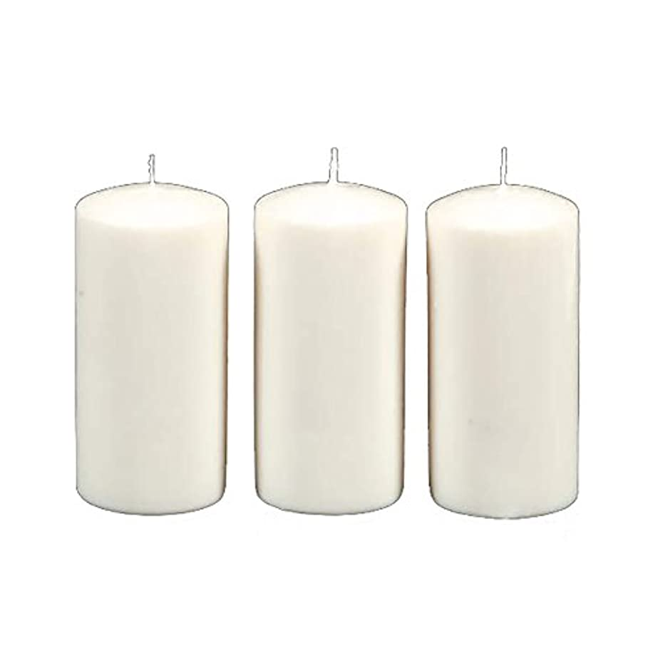 タウポ湖エレクトロニック遺伝子Darice 3-Piece Unscented Pillar Candles, 3 Inch by 6-Inch, White by Darice