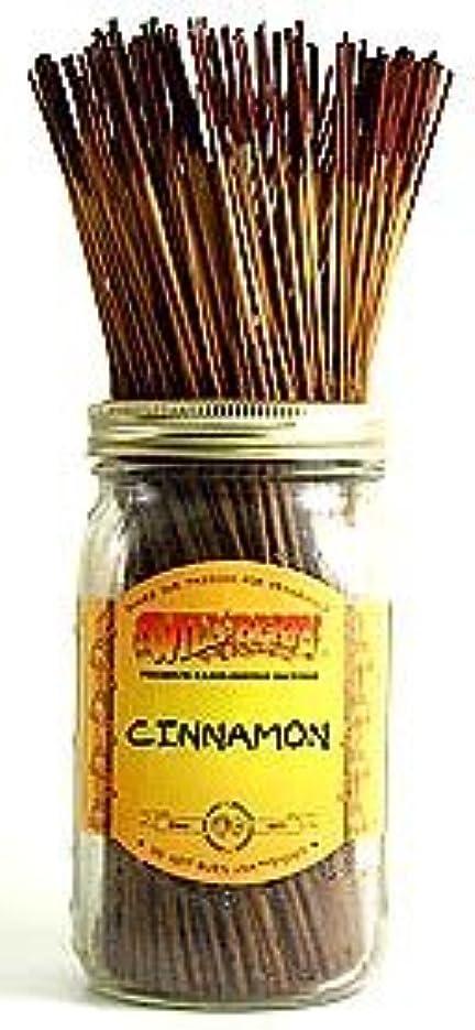 付添人防腐剤ほとんどの場合シナモン – 100ワイルドベリーIncense Sticks
