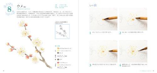 季節の水彩手帖 冬の花スケッチ~ 透明水彩で冬の花を美しく描こう!