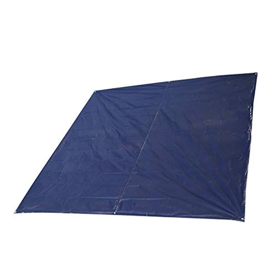 関係ないシンポジウム有益毛布マット特大大折りたたみピクニックマット敷物キャンプ毛布防水グランドカバー300×300センチ (色 : ブラック, サイズ : 300 x 300 cm)