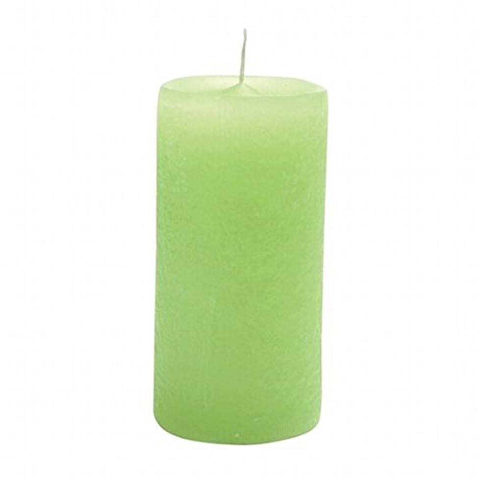 チーター徴収エントリヤンキーキャンドル(YANKEE CANDLE) ラスティクピラー50×100 「 ライトグリーン 」