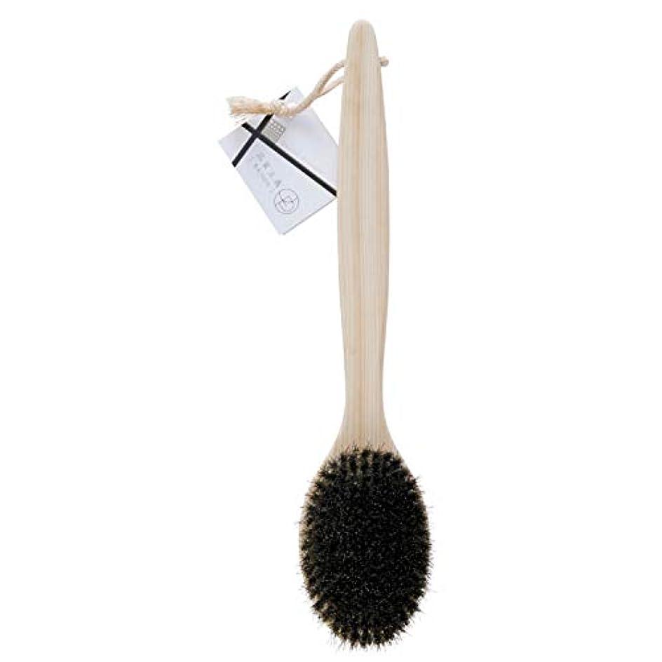 仮装サッカーエアコンオーエ ボディ ブラシ 品質主義 ヒノキ 馬毛 天然木 約35×7.5×4cm 1個