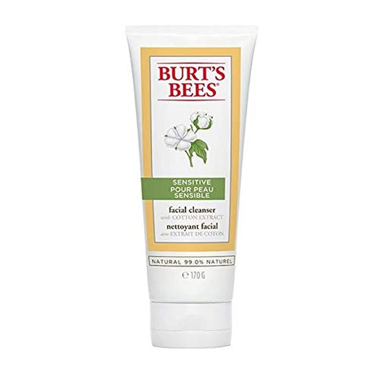 疾患経由で落胆する[Burt's Bees ] バーツビー敏感肌洗顔料の170グラム - Burt's Bees Sensitive Skin Facial Cleanser 170g [並行輸入品]