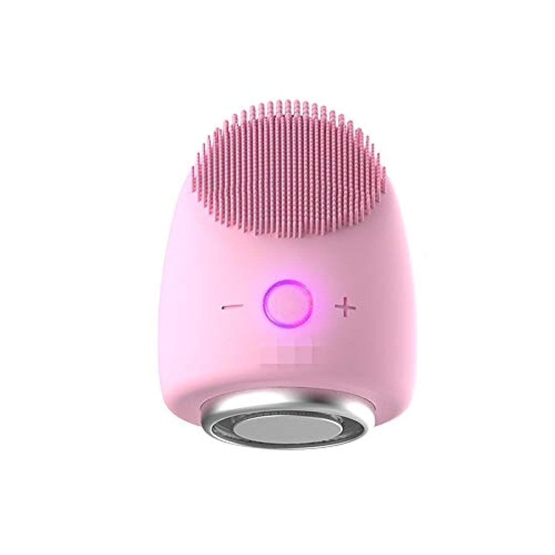 急速な衝突する四分円Chaopeng 多機能美容器具洗浄器具導入器具凝縮ホットドレッシング肌活性化器具 (Color : ピンク)