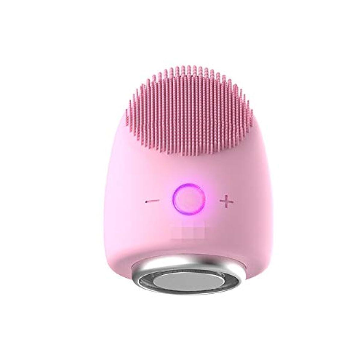 もちろん局強調Donghechengkang 多機能美容器具洗浄器具導入器具凝縮ホットドレッシング肌活性化器具 (Color : ピンク)