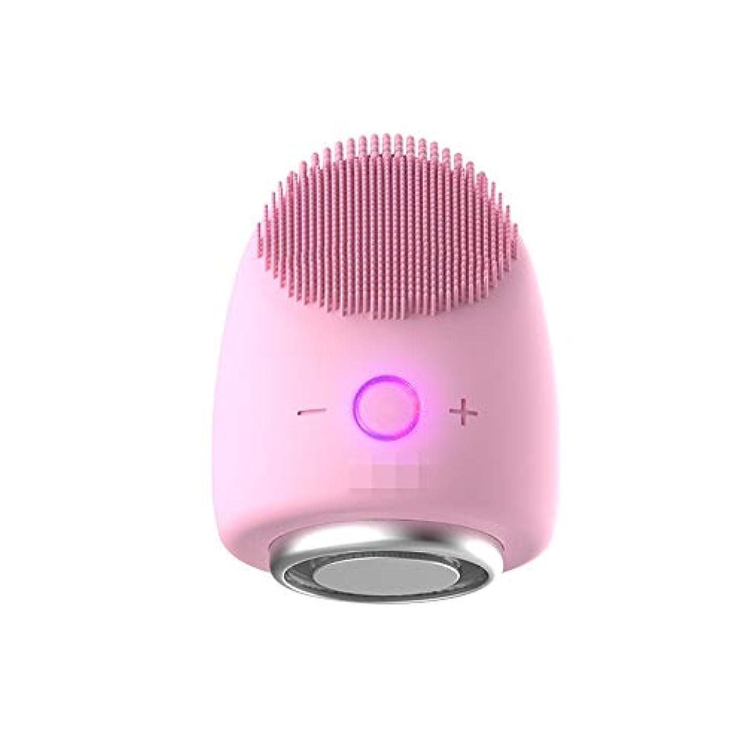 不安一時的無傷Chaopeng 多機能美容器具洗浄器具導入器具凝縮ホットドレッシング肌活性化器具 (Color : ピンク)