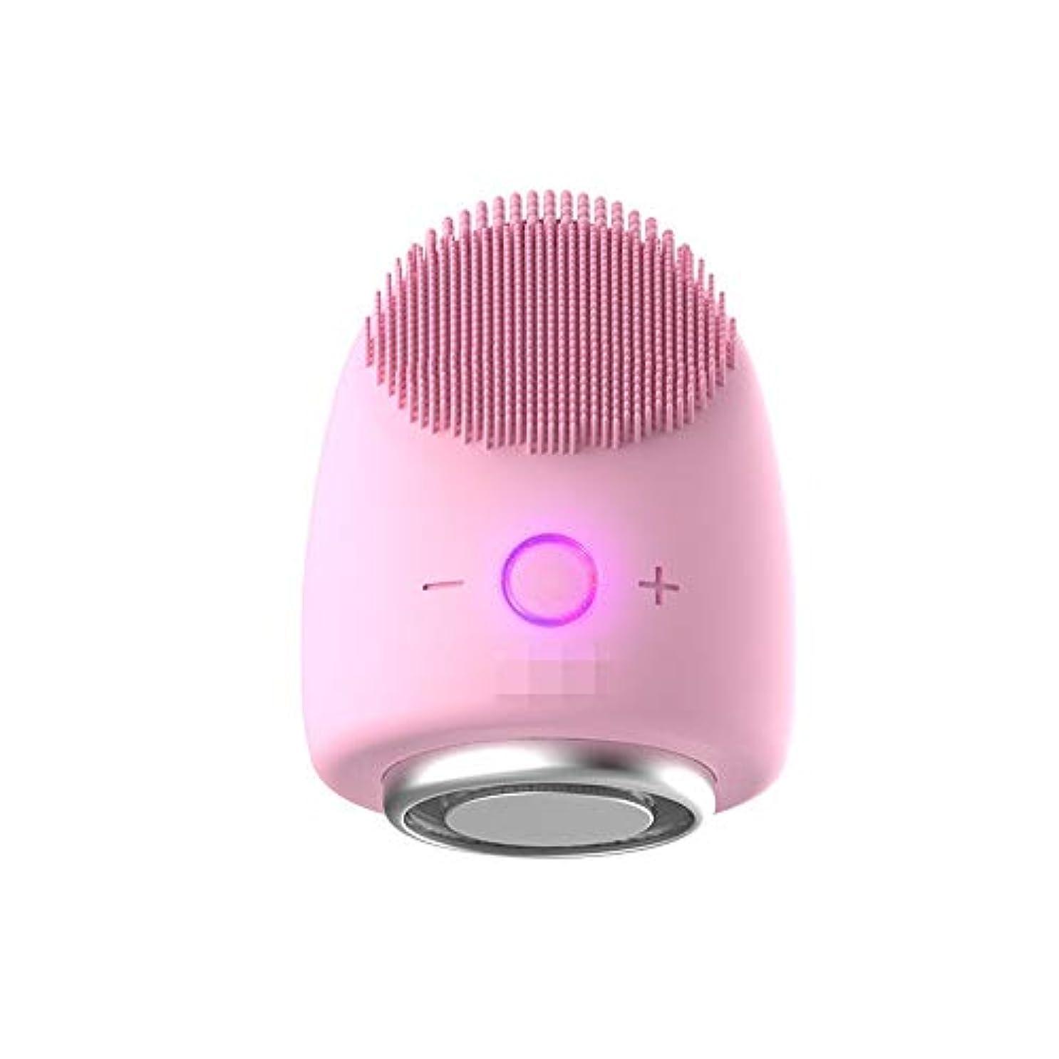 ピーク前部談話Chaopeng 多機能美容器具洗浄器具導入器具凝縮ホットドレッシング肌活性化器具 (Color : ピンク)