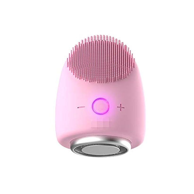 彼は小人ワイプDonghechengkang 多機能美容器具洗浄器具導入器具凝縮ホットドレッシング肌活性化器具 (Color : ピンク)