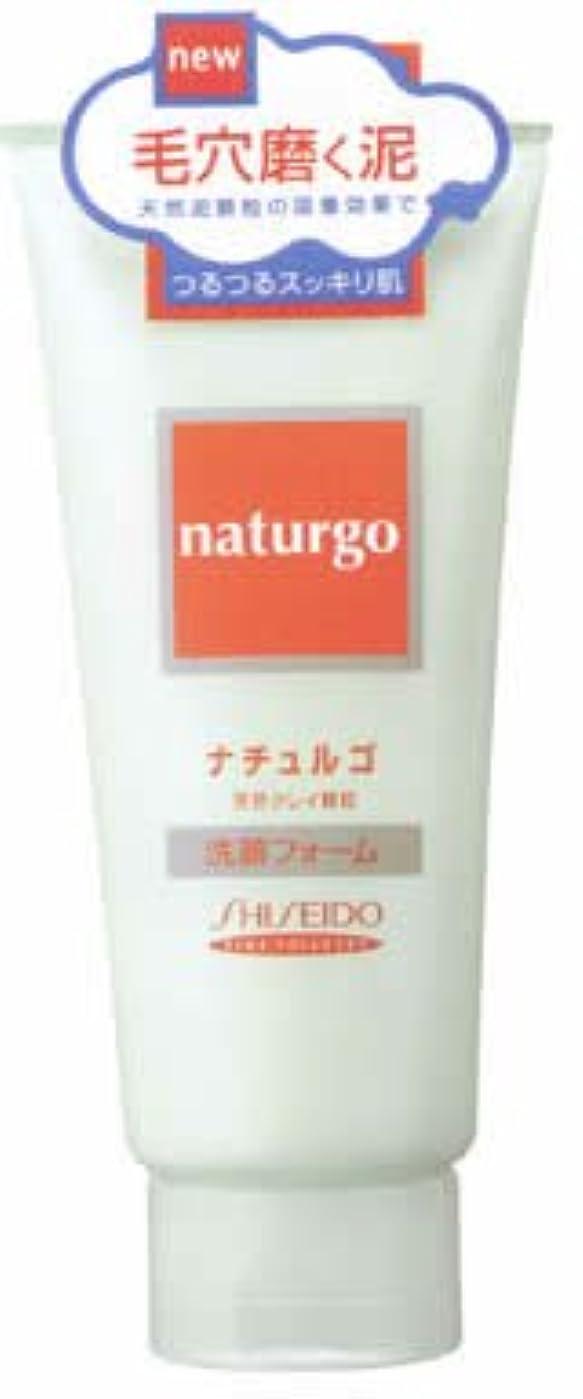 繁栄するさまようアクセシブルナチュルゴ 天然クレイ顆粒 洗顔フォーム 毛穴用 120g