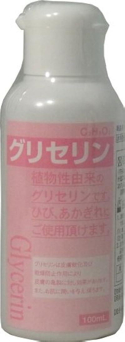 パンチ誓い食料品店グリセリン (指定医薬部外品) 100ml