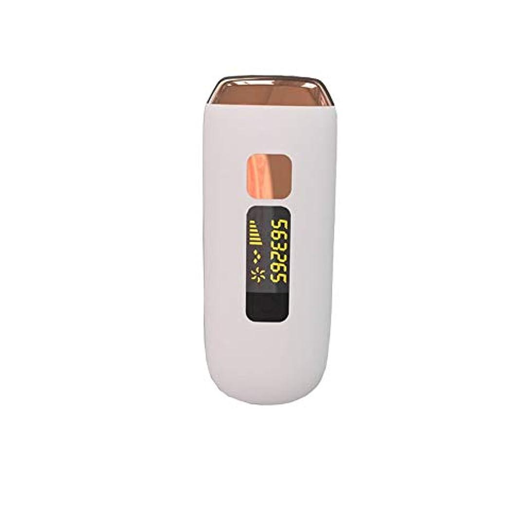染料メドレー口実鼻体フェイス脚のためのヘアリムーバー充電式カミソリレディ剃毛脱毛防水エピレーター
