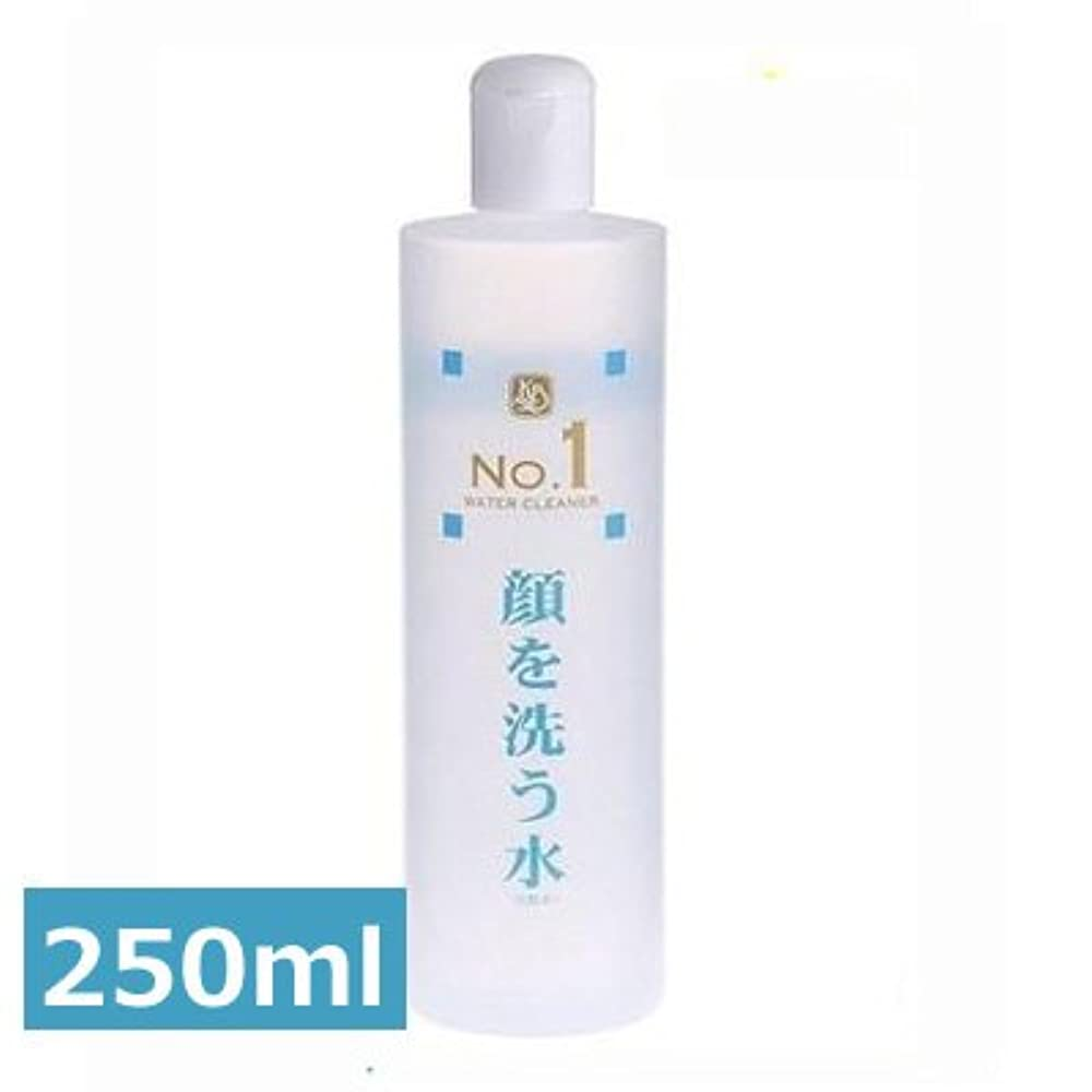 不快なサロン上げるウォータークリーナー カミヤマ美研 顔を洗う水 No.1 250ml 2本セット