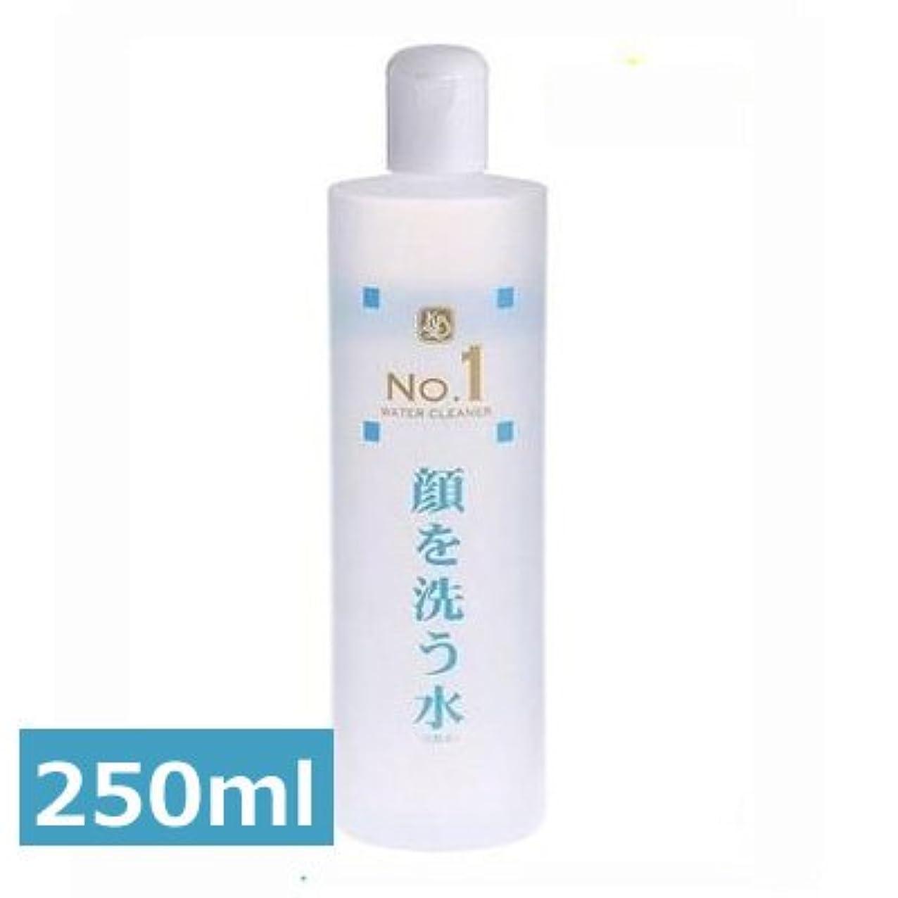 綺麗な磨かれた枠ウォータークリーナー カミヤマ美研 顔を洗う水 No.1 250ml 2本セット