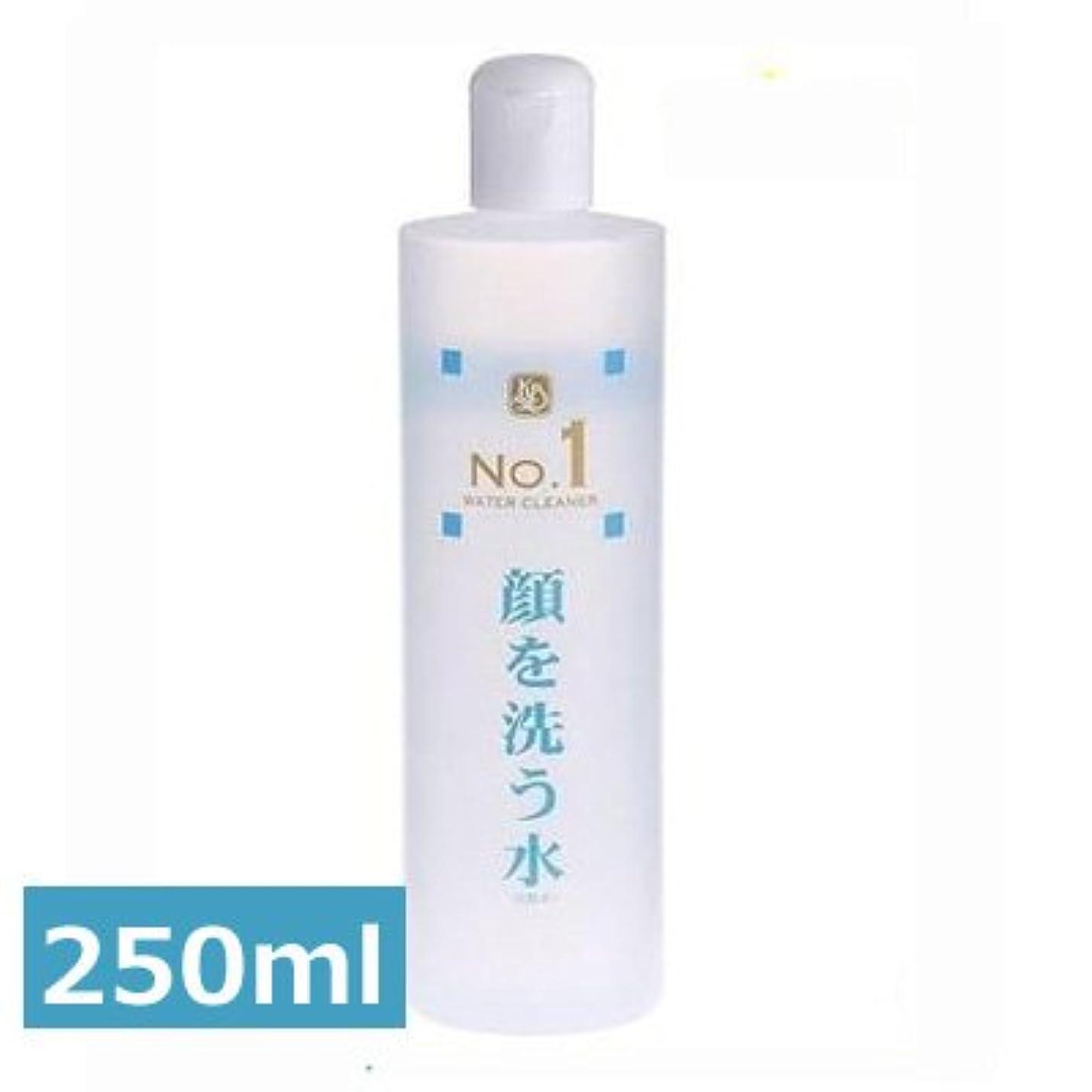 性能セブンブーストウォータークリーナー カミヤマ美研 顔を洗う水 No.1 250ml 2本セット