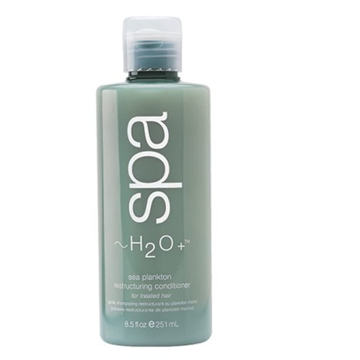 血まみれ浮浪者安価なH2O + Sea Plankton Restructuring Conditioner For Treated Hair 8.5 Fl.Oz. by H2O Plus by H2O Plus