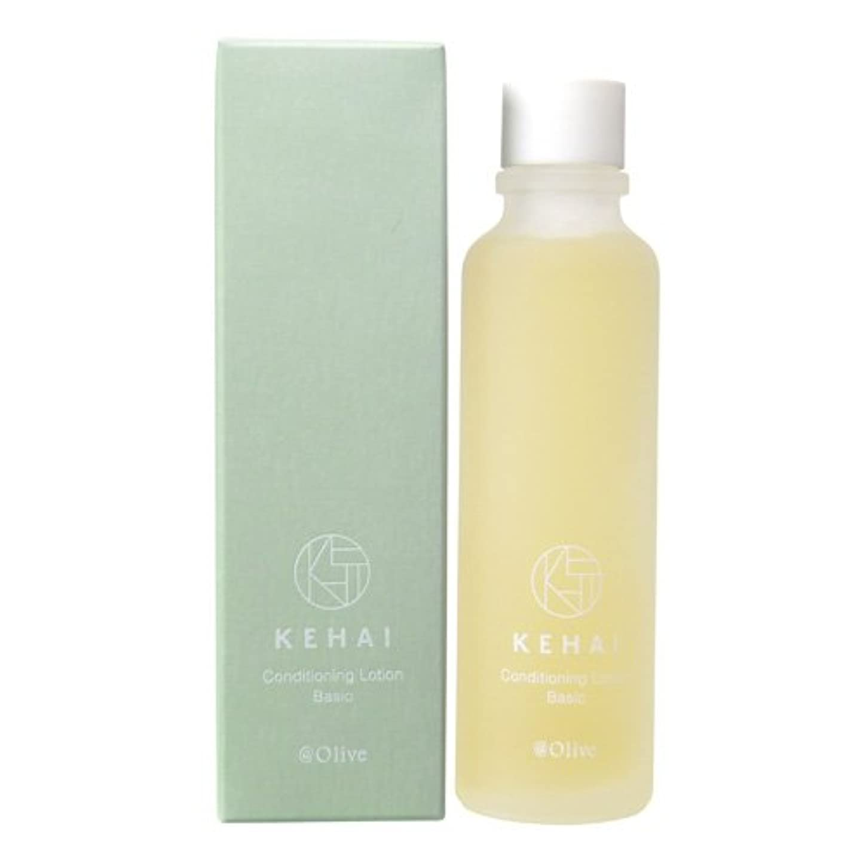 テクスチャー溶接布KEHAI コンディショニングローション ベーシック 〈化粧水〉 120ml