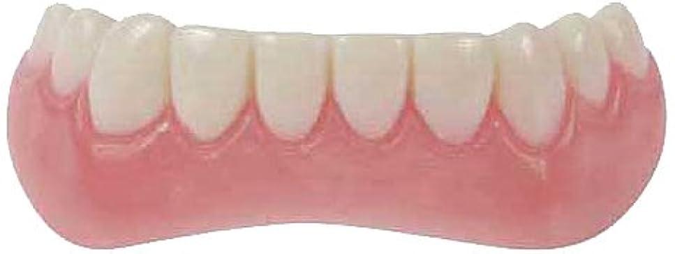 瞑想する浸した中にインスタントスマイル 下歯用