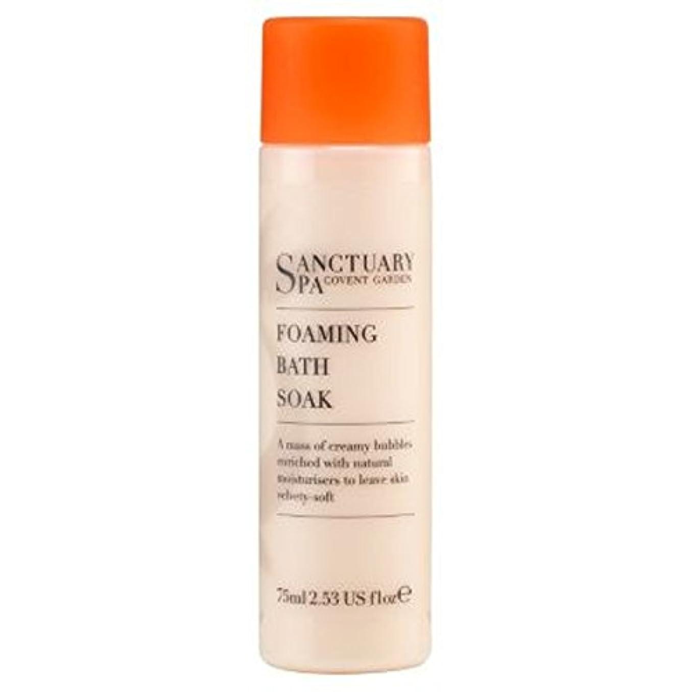 本質的ではない罰するテクスチャー聖域ミニ75ミリリットルを浸し風呂発泡 (Sanctuary) (x2) - Sanctuary mini Foaming Bath Soak 75ml (Pack of 2) [並行輸入品]