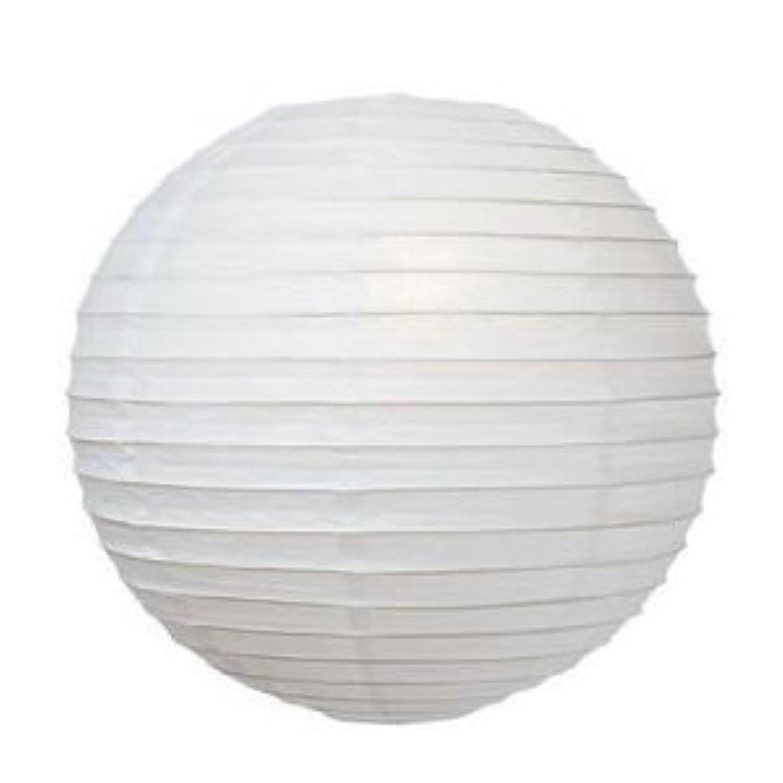 パーティー イベント 装飾に 紙ちょうちん 10個セット ホワイト 直径20cm