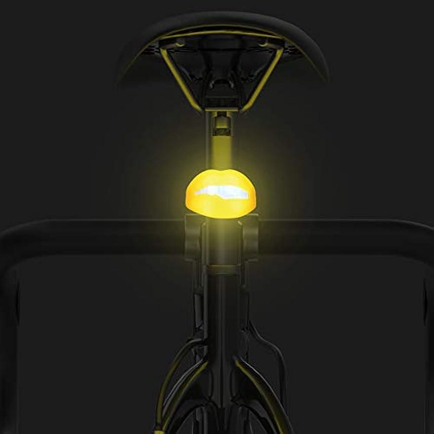 起きろグラディスエスニックVOLO HUM 自転車 テールライト セーフティーライト USB充電式 防水 テールライト