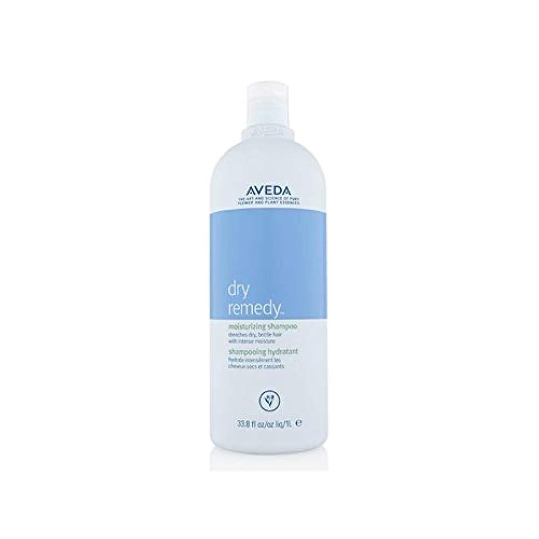 結晶建物素晴らしいです[AVEDA ] アヴェダドライ救済シャンプー(千ミリリットル) - Aveda Dry Remedy Shampoo (1000ml) [並行輸入品]