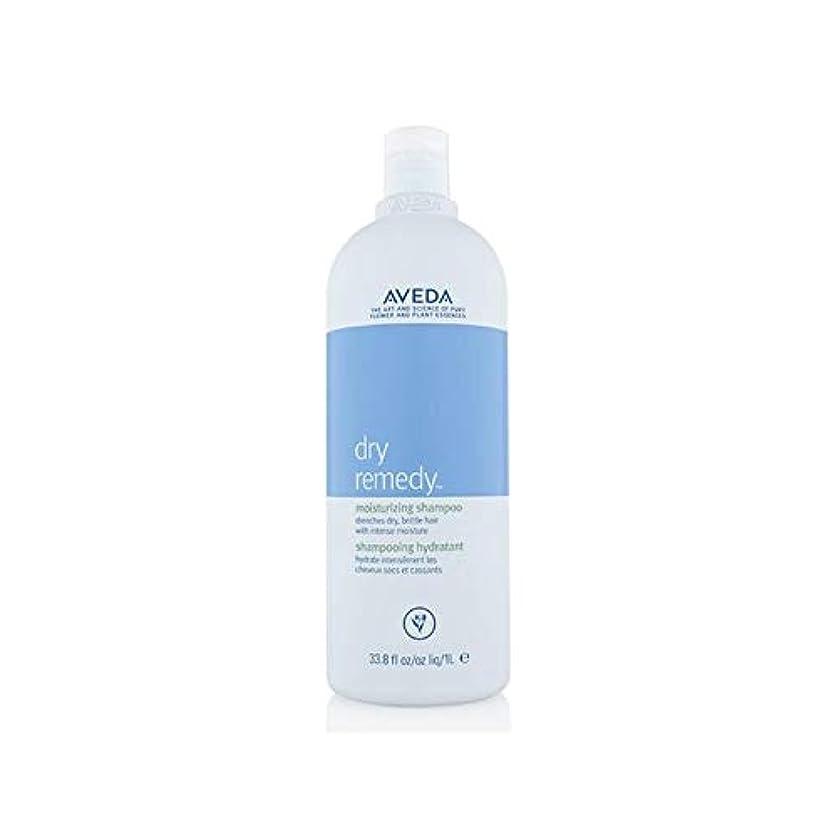 先入観タウポ湖私たち自身[AVEDA ] アヴェダドライ救済シャンプー(千ミリリットル) - Aveda Dry Remedy Shampoo (1000ml) [並行輸入品]