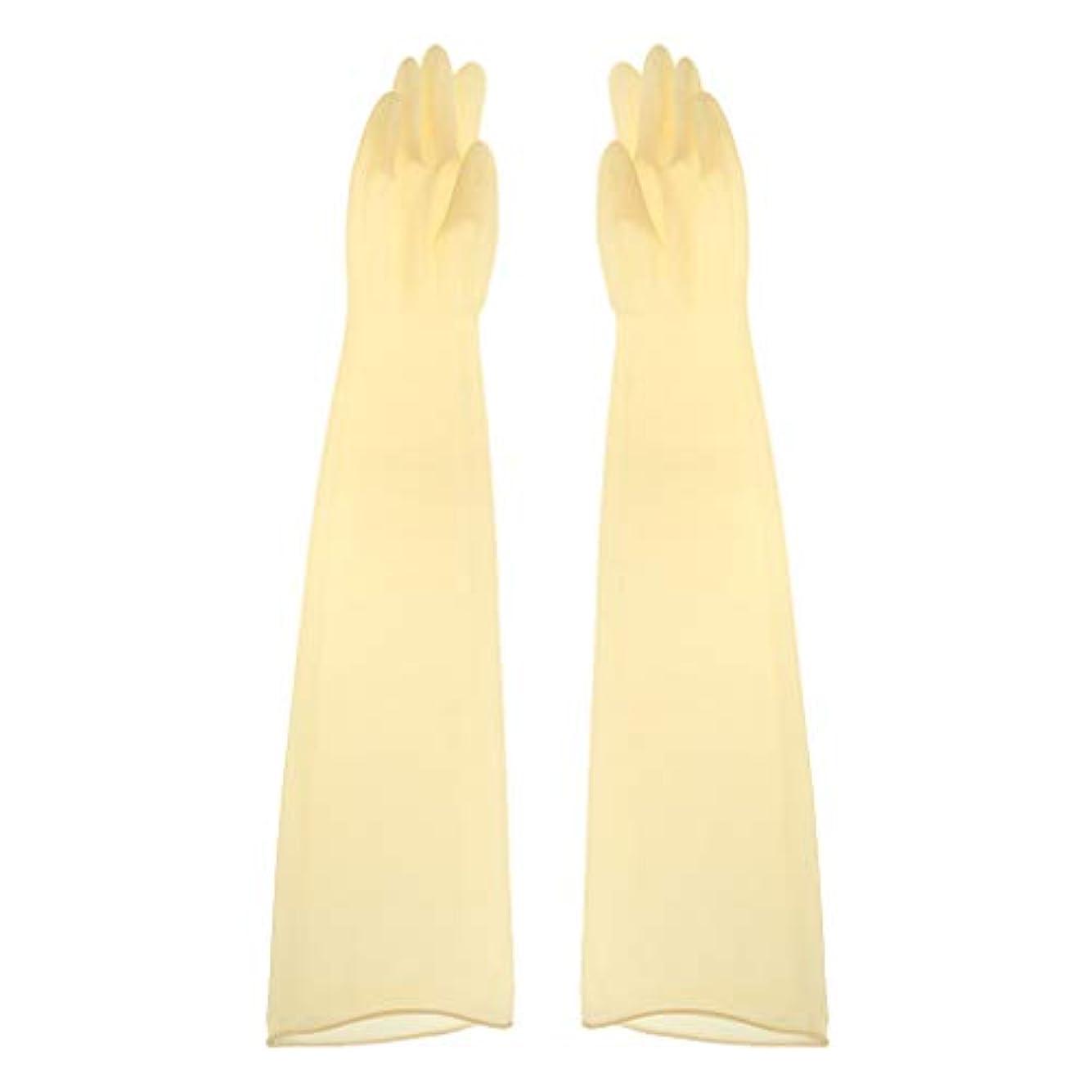 愛人並外れて動くgazechimp ゴム手袋 ロング 70cm 耐薬品性 酸?アルカリに強い手袋 ラテックス手袋 1ペア - 700x160x0.8mm