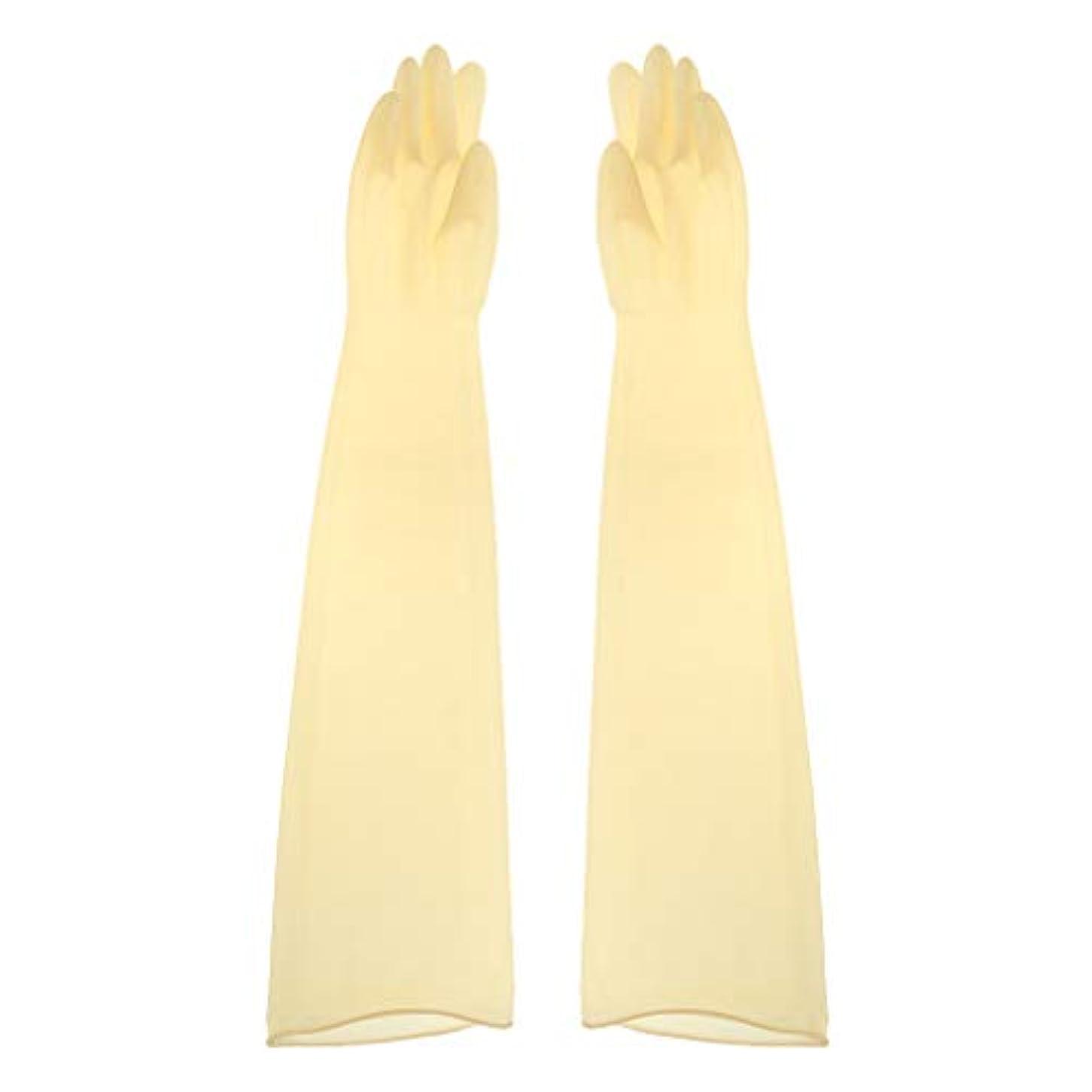 役職どこでも保険をかけるgazechimp ゴム手袋 ロング 70cm 耐薬品性 酸?アルカリに強い手袋 ラテックス手袋 1ペア - 700x160x0.8mm