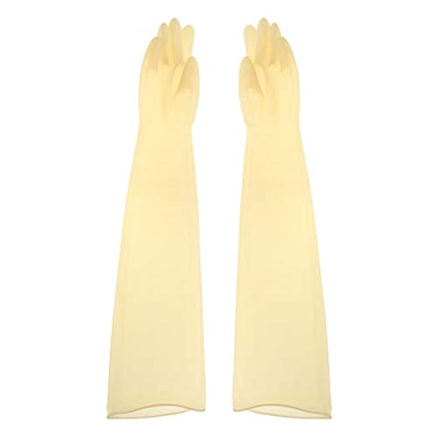 出発邪魔する雲ゴム手袋 ロング 70cm 耐薬品性 酸?アルカリに強い手袋 ラテックス手袋 1ペア - 700x160x0.8mm
