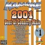 Karaoke: Country Timeline Male Hits of 2001 - 1