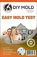 DIYモールドテスト、型テストキット(3テスト)。 ラボ分析と専門家によるコンサルティングが含まれています。