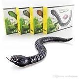 RC Innovation Snake BLACK