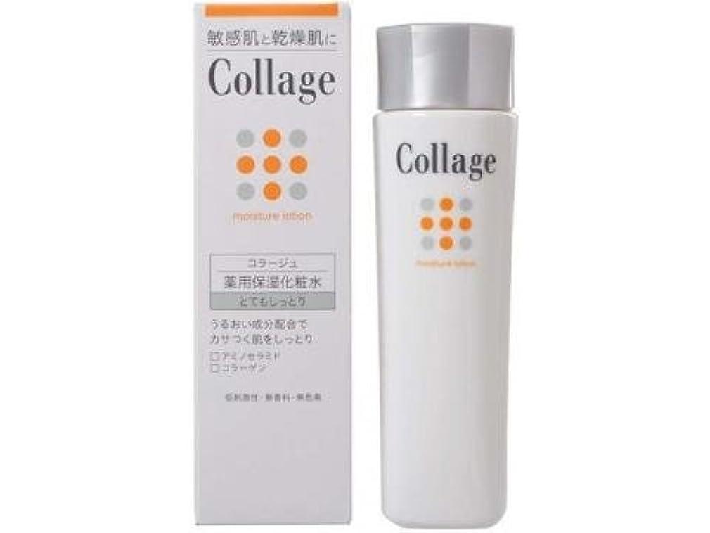 高速道路ウッズドループコラージュ 薬用保湿化粧水 とてもしっとり(120mL)×2