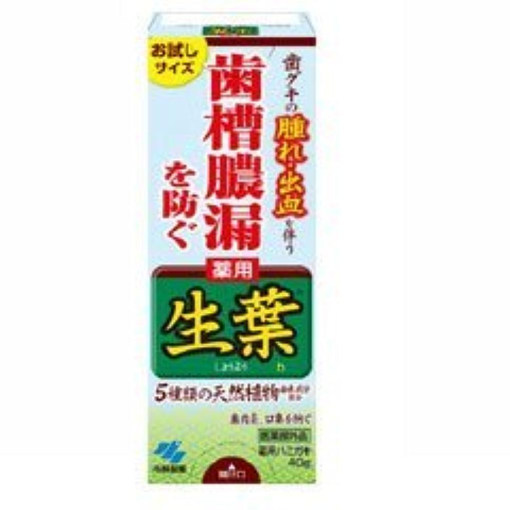 重要動不愉快に【小林製薬】生葉 お試しサイズ 40g