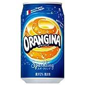 サントリー オランジーナ 340ml缶×24本入×(2ケース)