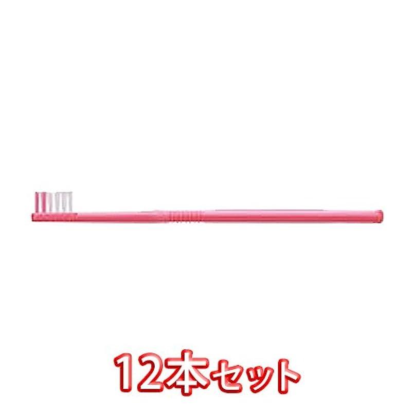 カレッジ道を作る木製ライオン オルソドンティック 歯ブラシ DENT.EX Orthodontic-T 12本入