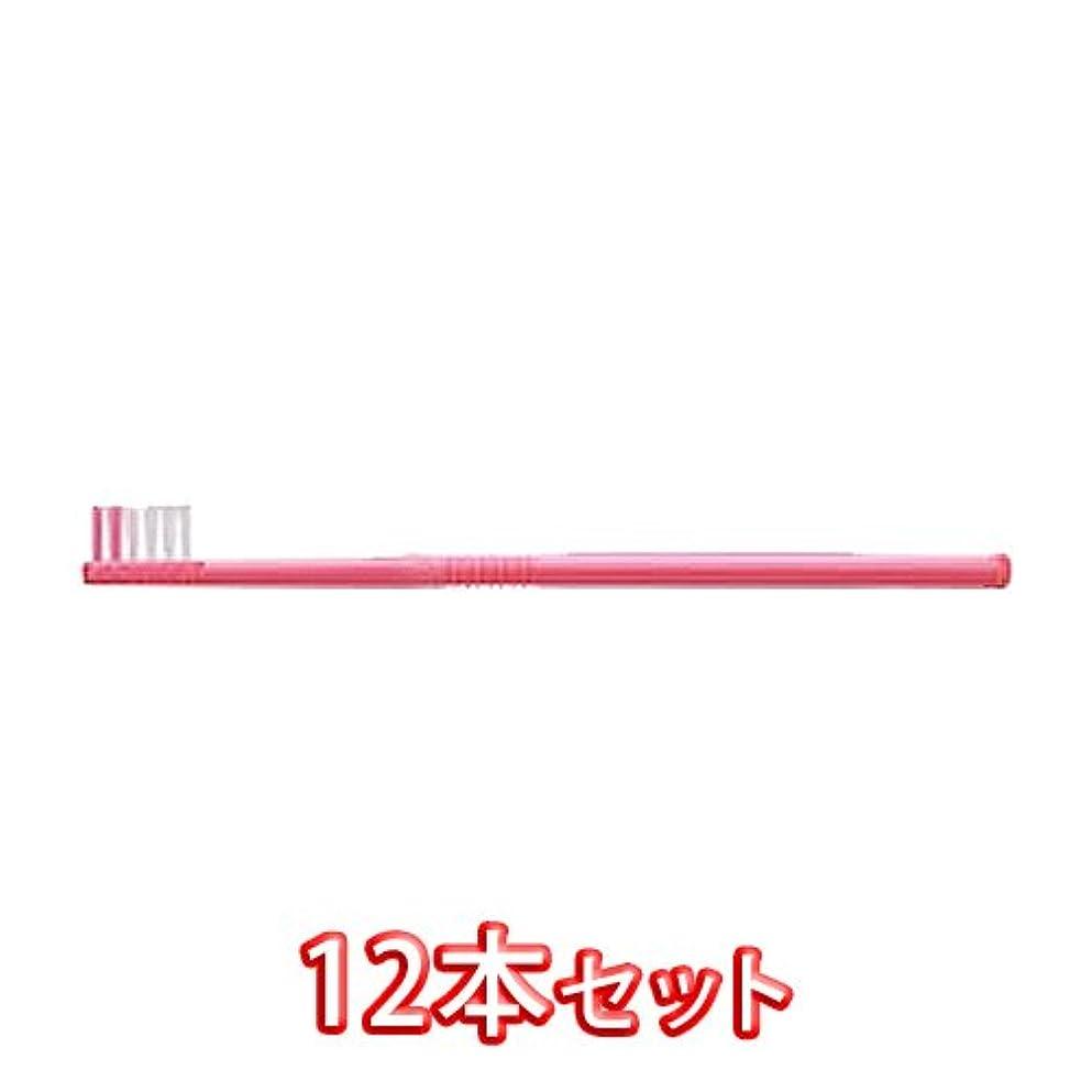 方言実際デコレーションライオン オルソドンティック 歯ブラシ DENT.EX Orthodontic-T 12本入