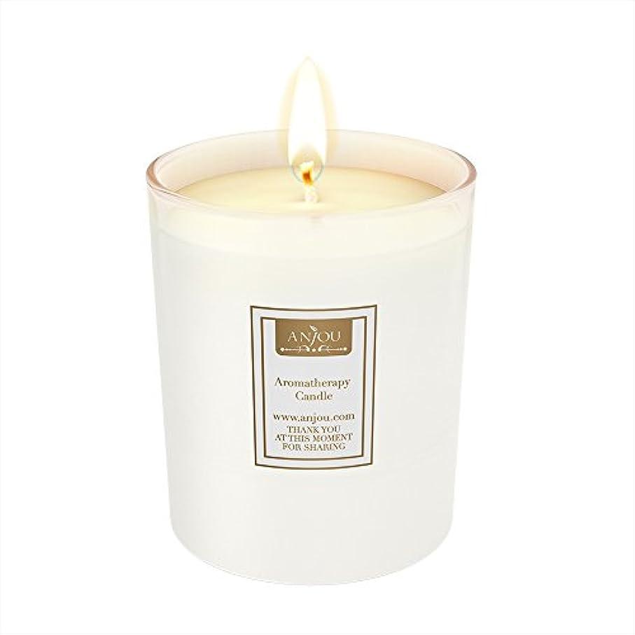 わかりやすい外国人シャツアンジュScented Candle 7 oz AJ-PCN002