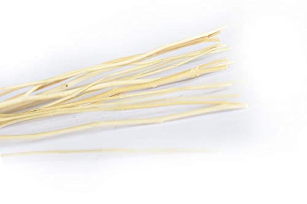 品種船尾スライムMAYA リードディフューザー ウィードスティック - White