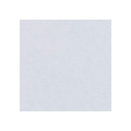 ワーロン ワーロンシート(無地) スタンダードタイプ 強化障子紙 0.2×930×1850mm (No.52)